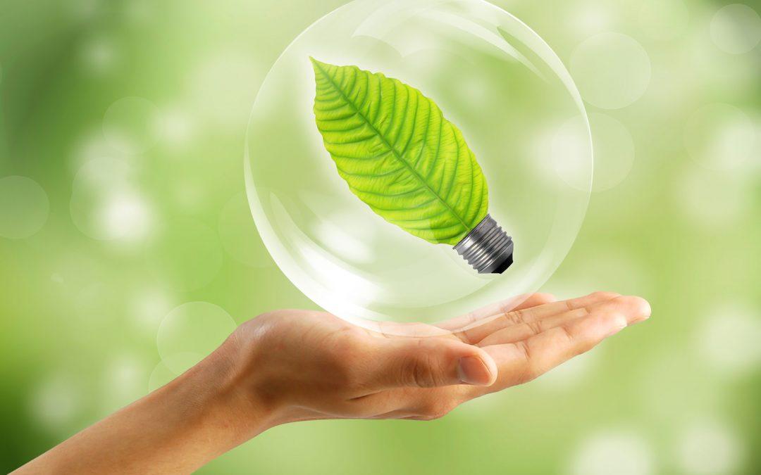 Les avantages du bâtiment durable certifié LEED